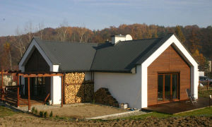 Как построить дом из пенопласта самостоятельно – пошаговая инструкция. Японский дом на фото