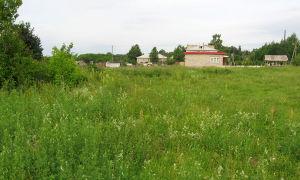 Безвозмездное и срочное право использования земельного участка: что означает, как получить?